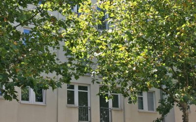 Zentral gelegenes Mehrfamilienhaus im Fesenfeld